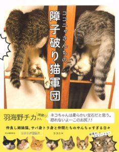 猫写真集_10