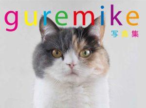 猫写真集_12