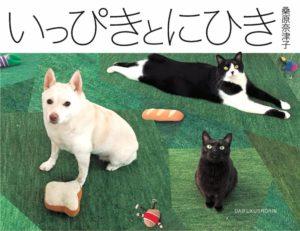 猫写真集_21