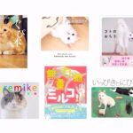 猫写真集_30